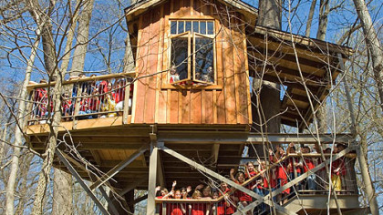 Schoolchildren pose on the steps leading to the Birdhouse treehouse at Longwood Gardens shortly after the treehouse exhibition opened in April.