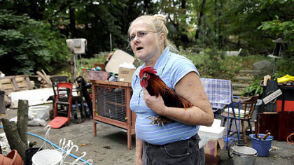 Mary Lu Frankovic, 56, with her rooster, Hank, watches as humane officers remove rabbits from her home on Ridgeside Road in Ross yesterday.