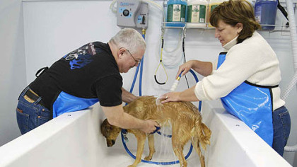 Julia Bodura/Post-Gazette