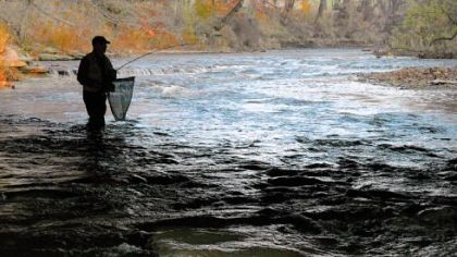 &quot;The old timers remember the salmon runs, and some anglers have been asking us for a little more diversity again.&quot; -- Chuck Murray, Pennsylvania Fish and Boat Commission biologist